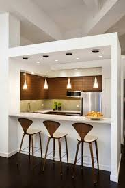 Kitchen Peninsula Design by Apartments Interesting Stylish Open Kitchen Peninsula Design
