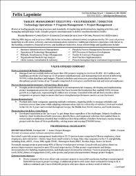 It Program Manager Resume Resume Program Manager Cbshow Co