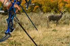 must have archery targets for 2017 archery business