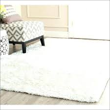 Area Rugs White White Plush Area Rug White Shag Area Rug St Interior Doors Fort