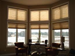 Window Blinds Blinds For High Windows Decorating Ceiling Net