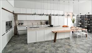 Modern European Kitchen Cabinets by Kitchen Modern Kitchen Showrooms How Much Does An Ikea Kitchen