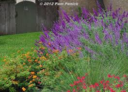 49 best texas native plants images on pinterest native plants