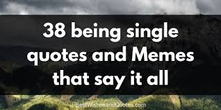 Memes About Being Single - 38 being single quotes and memes that say it all best wishes and