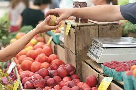 vashi market a beginner s guide to thriving farmers markets in mumbai lbb mumbai