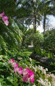 gallery w christian busk naples florida landscape