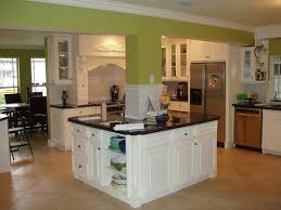 White Kitchen Wall Cabinets Plain Kitchens With White Cabinets And Green Walls Painted Wall