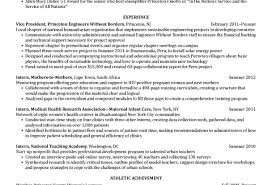perfect sales resume furniture sales resume vp sales resume objective examples success