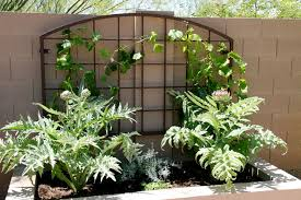 Ideas For Metal Garden Trellis Design Remarkable Ideas For Metal Garden Trellis Design Trellis Designs
