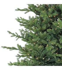 bloom room 7 5 u0027 foxtail pine pre lit christmas tree joann