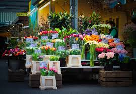 flowers for sale free images plant colorful market stall floristry retail