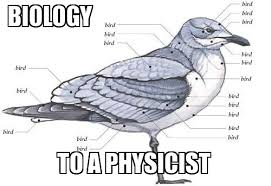 Biology Memes - biology to a physicist memes and comics