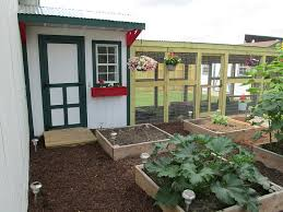 How To Design My Backyard by I Need Some Ideas On How To Design My Chicken Coop So Can You Post