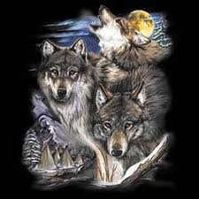 indian wolves and unisex t shirt