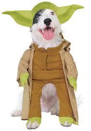 50 halloween costumes unique small dog halloween costumes