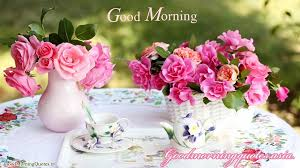 Cute Flower Wallpapers - 15 beautiful good morning love images with flowers