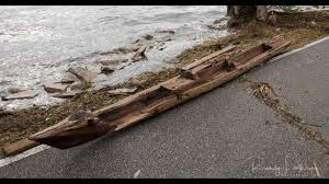 wood from canoe unearthed by irma estimated to be more than 300
