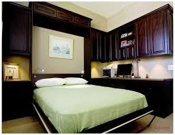 Murphy Bed Guest Room 21 Best Wallbeds Murphy Beds Images On Pinterest Murphy Beds