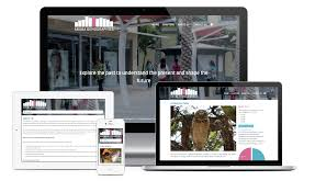 caribmedia aruba web design and development application