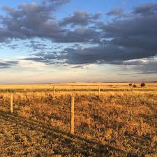 homesteading in wyoming u2022 the prairie homestead