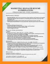 8 combination resume examples abstract sample