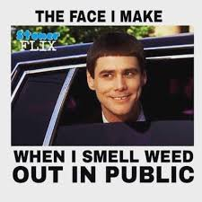 Best Weed Memes - the 46 best stoner memes on the internet