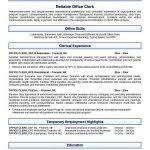 Free Resume Templates Open Office 100 Open Office Resume Templates Resume Templates Microsoft