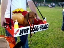Amazing Halloween Costumes Sale Dogs Sale Buy Wienermania
