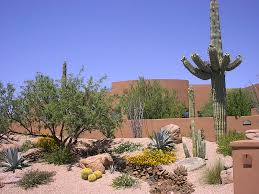 desert landscaping ideas flower bed front of house arizona trees
