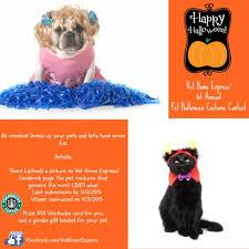 vet home express u0027 1st annual pet halloween costume contest vet