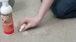 How To Use The Rug Doctor Machine How To Use Videos Rug Doctor
