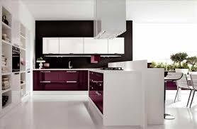 modern high gloss kitchens best grey ideas only on pinterest best black high gloss kitchen