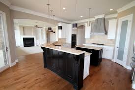 Kitchen Cabinet Finishes Ideas Couto Custom Home Painted Cabinet Finish Sherwin Williams Balanced