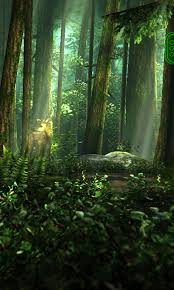 hd wallpaper for android to download wide forest wallpaper android in wallpaper windows 8 with forest