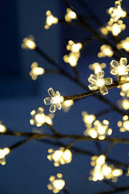 Christmas Lighted Balls Outdoor by Best 25 Christmas Lights Etc Ideas On Pinterest Christmas