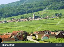 panoramic view itterswiller basrhin alsace france stock photo