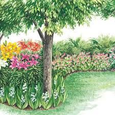 Lily Flower Garden - best 25 lily garden ideas only on pinterest lilies flowers