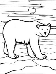 sleeping polar bear in arctic animals colouring page happy colouring