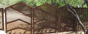 backyard gates tucson home outdoor decoration