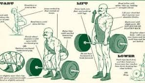 What Do Bench Presses Work Out How To And Tips Decline Bench Press Fitdefinition