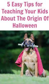 the 25 best origin of halloween ideas on pinterest elf store