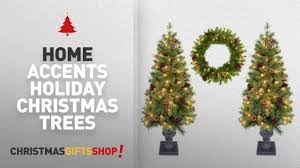 trees by home accents home accent