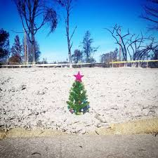 santa rosa christmas lights in fire ravaged coffey park residents put up christmas trees where
