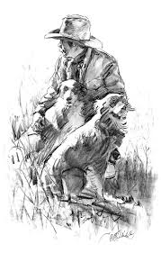j bar w australian shepherd 43 best aussie images on pinterest australian shepherd dogs dog