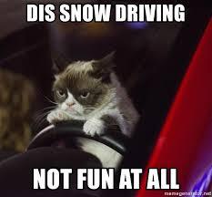 Grumpy Cat Snow Meme - dis snow driving not fun at all grumpy cat driving 2 meme