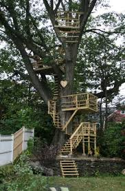 this is amazing not really a tree house more like tree balconies