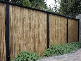 Privacy Fence Ideas For Backyard Cheap Privacy Fence Ideas Ideas Backyard Wood Fence