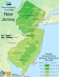 New Jersey vegetaion images Usda new jersey plant growing zones map gif