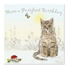 Cat Birthday Cards Cat Birthday Card Purrfect Birthday Unique Greeting Cards Online