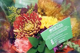 strangers flowers flower happiness across america with petal it forward